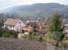 Bilder aus Winterthur und Umgebung_160
