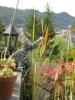 Bilder aus Winterthur und Umgebung_64